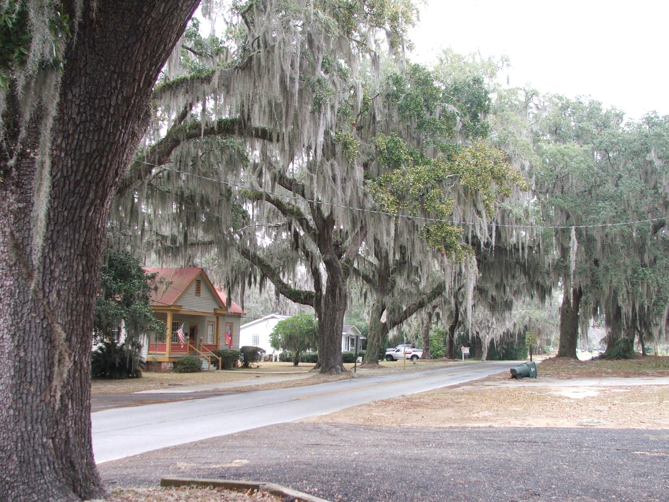 A street in Darien, GA