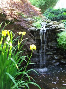 The waterfall at Woodland Cottage