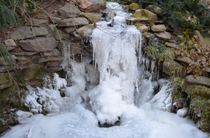 Frozen pond/waterfall, Woodland Cottage, Winter 2014